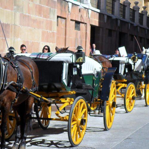 Aida Bella 17-28 Feruar 2011neue aulage 17 April 256